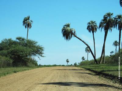 Via de acceso al Palmar