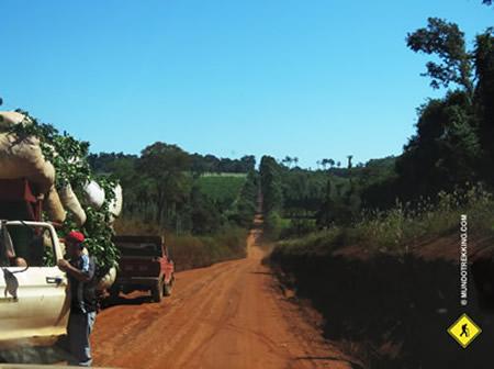 Misiones Argentina lugar para observación de aves viajes de fotografía y senderismo.