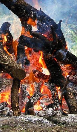 Fuego en campamento