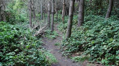 trekking por senderos
