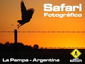 Safari fotográfico en La Pampa