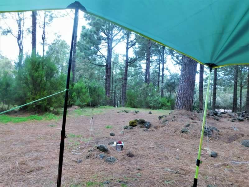 Acampada libre en bosques